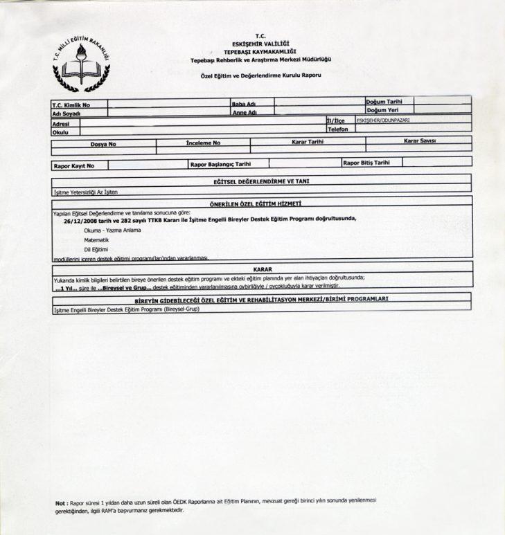 ram raporu örneği